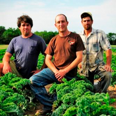 Josh Engel, Mike Lind, and Noah Engel of Driftless Organics. Photo by Jim Klousia/Edible Madison.