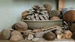 Materials from Sandra Byers' studio