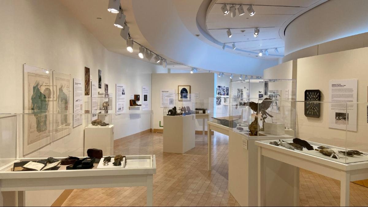 Interior James Watrous Gallery shot of the Collections & Connections exhibit