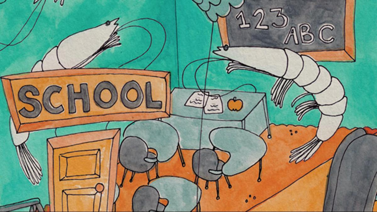 Illustration by Stephanie Steinhauer