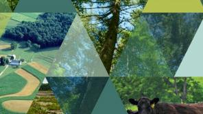 Cover of Climate Critical Lands Report