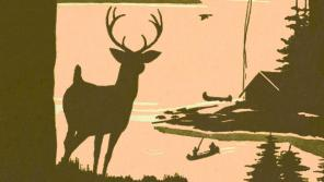 Mudstone illustration