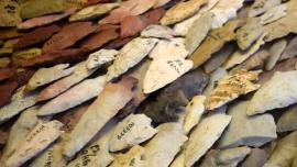 A collection of numbered  arrowheads awaits cataloguing