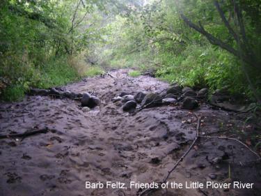 Little Plover River Runs Dry, Barb Feltz
