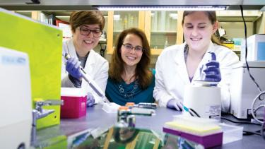 Neuropsychologist Karyn Frick (center), postdoctoral fellow Wendy A. Koss (left), and graduate student Miranda Schwabe (right) in the Frick Lab at the University of Wisconsin–Milwaukee where they examine the complex relationship between hormones and memory in the brain. Photo by Troye Fox/UWM Photos.
