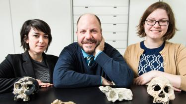 doctoral candidate Alia Gurtov, professor John Hawks, and postdoctoral fellow Caroline VanSickle in the Biological Anthropology Lab at UW–Madison with casts of fossil specimens from hominins who lived 1 to 2 million years ago in Africa and West Asia. The three paleoanthropologists are members of the Rising Star Expedition that discovered Homo naledi, a new species of hominid that existed in South Africa hundreds of thousands to millions of years ago. Photo credit: Jeff Miller/UW–Madison Communications